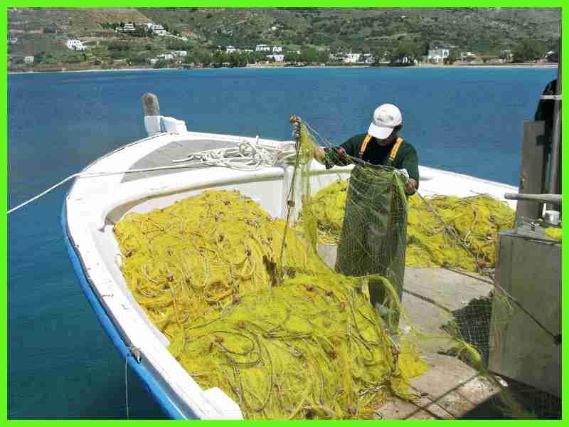 Αποτέλεσμα εικόνας για διχτυα ψαρεματος