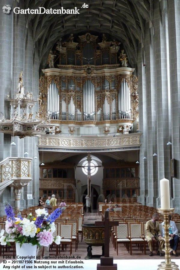 Marktkirche mit Blick auf Kanzel und Orgelempore