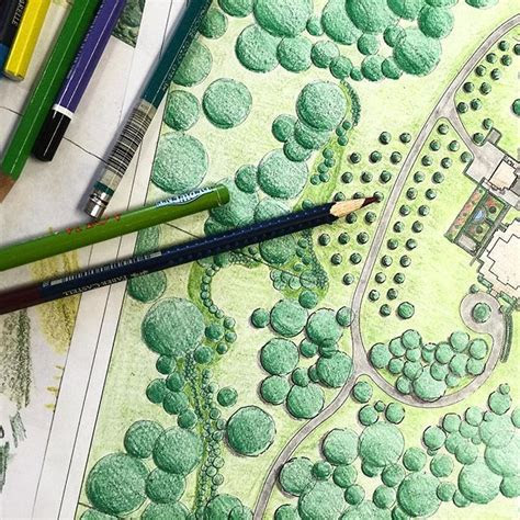art drawing rendering colored pencil landscape garden
