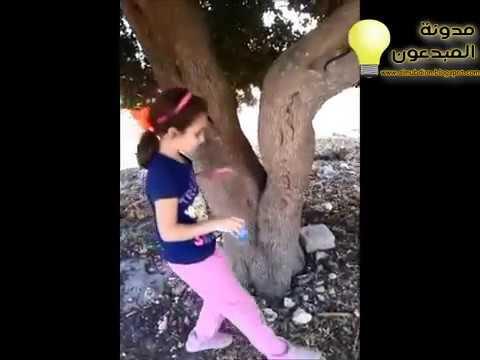 """""""فيديو"""" اروع مشهد مضحك لـ قطة وهي تلعب في حبل و العاب اخرى .. شاهد الفيديو"""