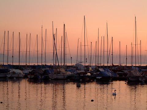 Lausanne Harbor