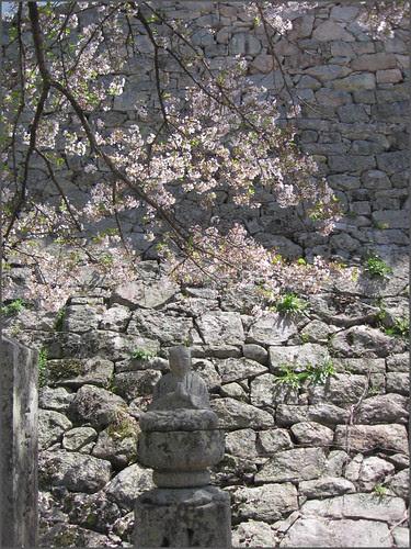 054 stone wall Buddha petals