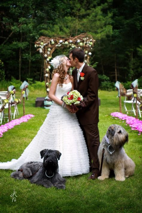 17 Best images about Dogs in Weddings on Pinterest   Dog
