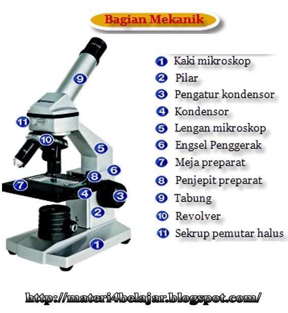 Soal Bagian Mikroskop Dan Fungsinya Guru Ilmu Sosial