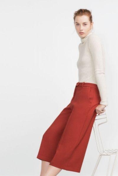 Zara Culottes
