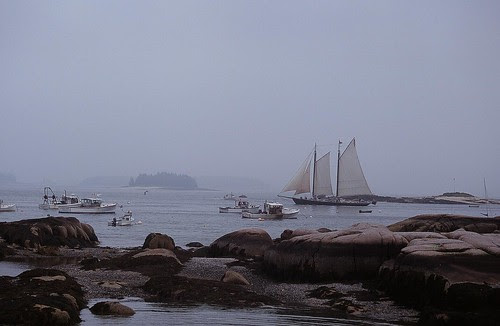 Foggy Stonington Harbor Maine
