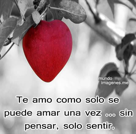 Best Descargar Imagenes De Amor Para Mi Celular Gratis Image Collection
