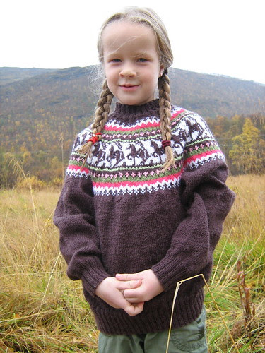 horsesweater2