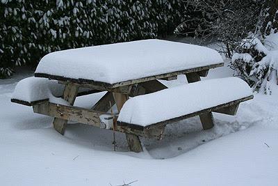 snowtable