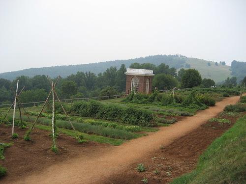 TJ Garden 001