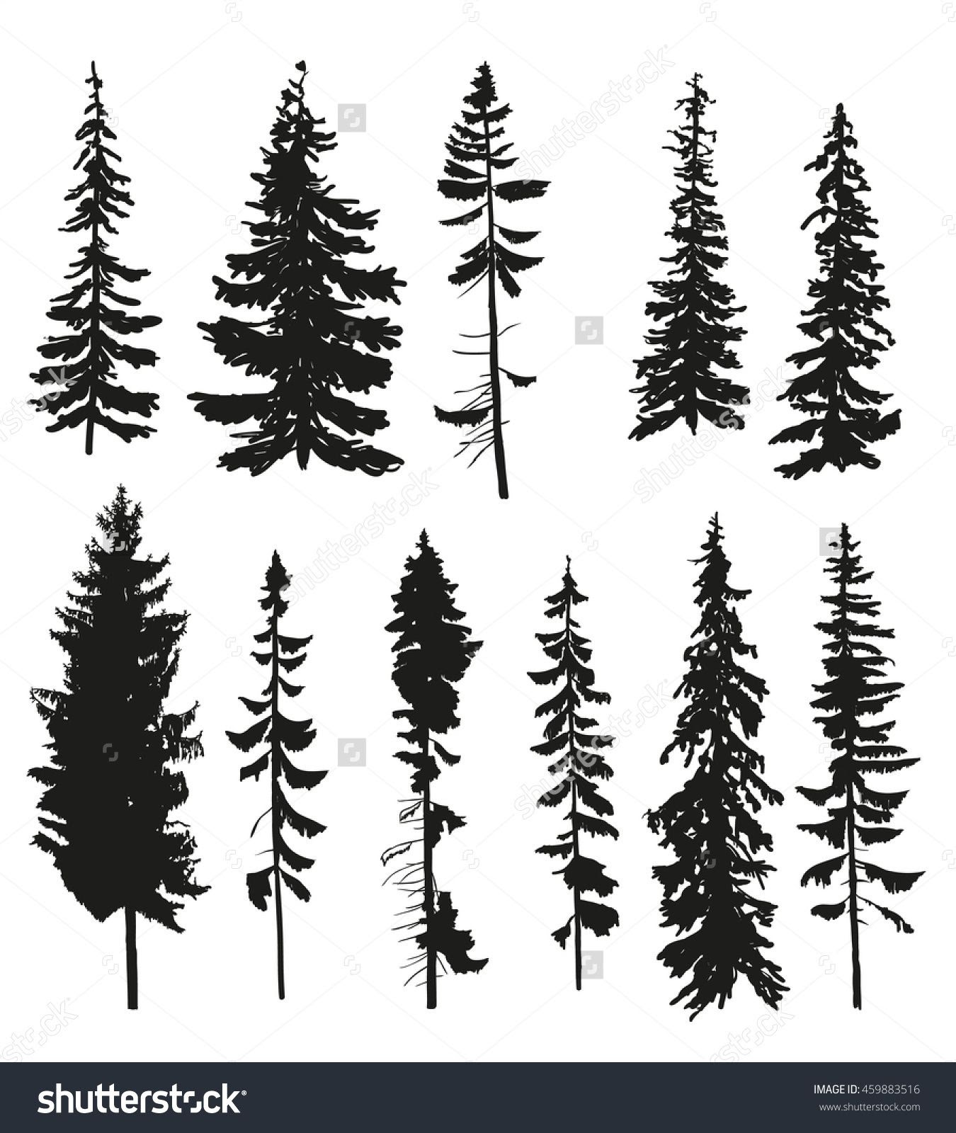 Pine Tree Vector at GetDrawings   Free download