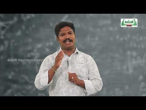 5th Maths பின்ன எண்கள் அறிமுகம் அலகு 1 Kalvi TV