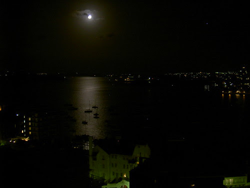 Moon over Elizabeth Bay