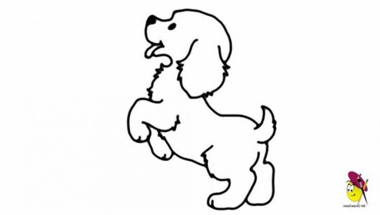 Dunia Belajar Dog Jumping Drawing Easy