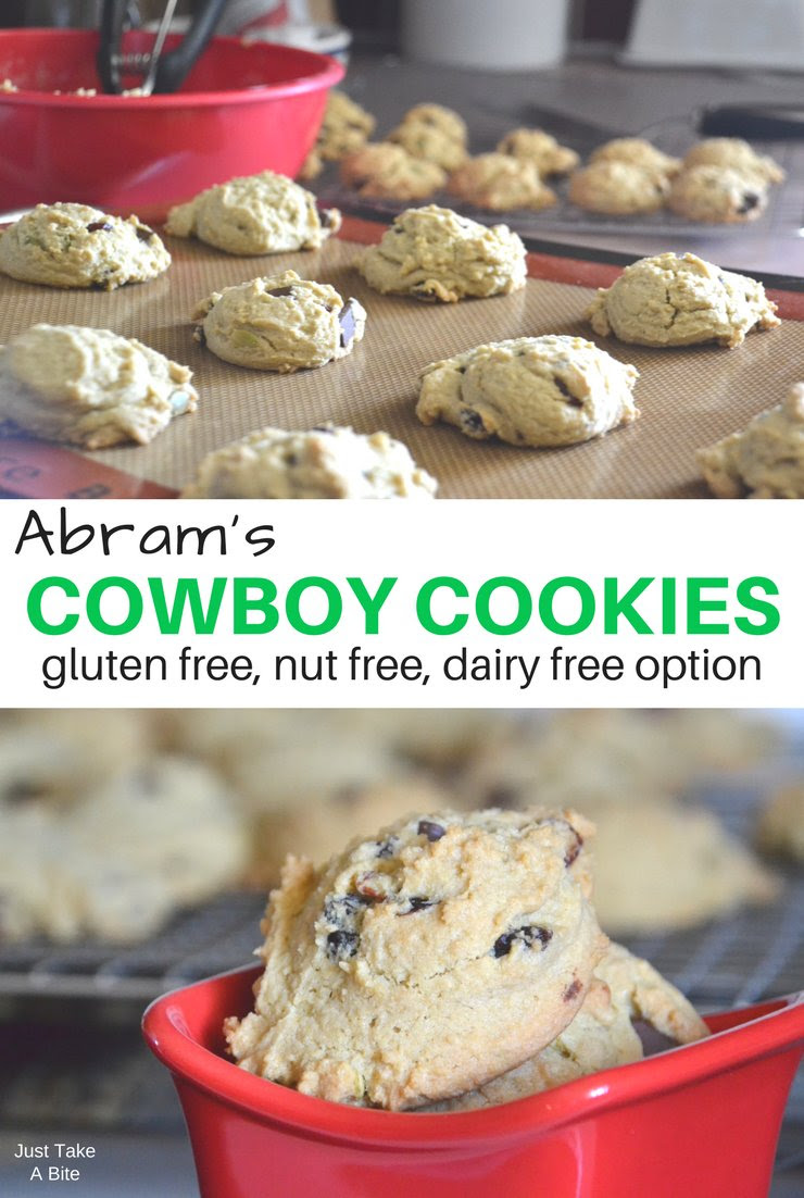 Abram's Cowboy Cookies {gluten free, nut free, dairy free ...