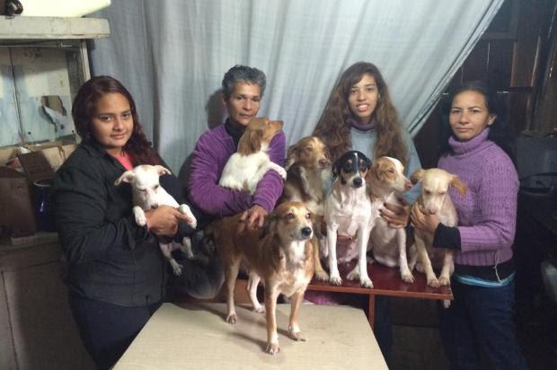 Jane e Ieda precisam viajar para Belém do Pará e levar os animais de estimação junto na mudança Foto: Ana Karina Giacomelli / Agência RBS
