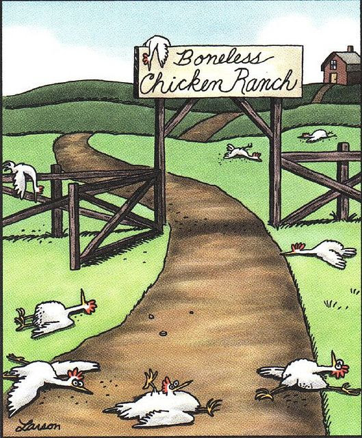 Far Side by Gary Larson. The Boneless Chicken Ranch has always been my favorite!