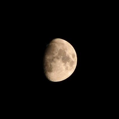 goodnight moon_sized