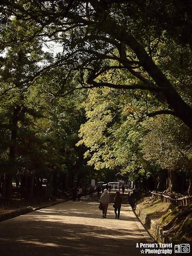 2011Kyoto_Japan_ChapTwelve_9