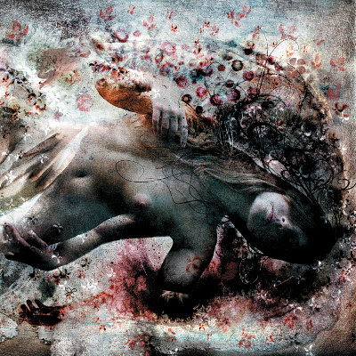 http://farm4.static.flickr.com/3477/3821278821_46f7edd015.jpg
