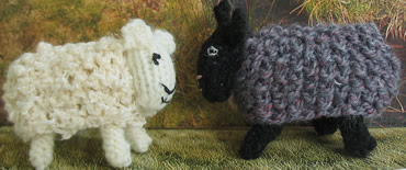 Sheep8_1