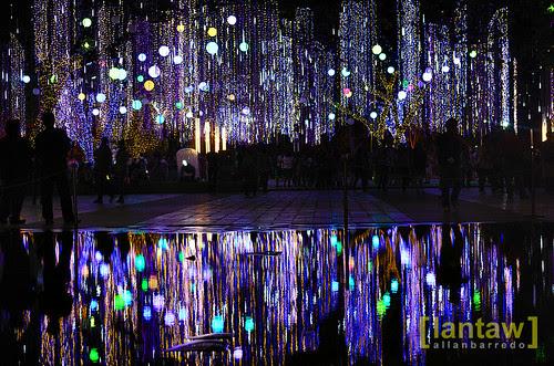 Ayala Lights 30