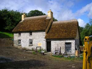 Historical Roofs re thatching of a traditional Welsh