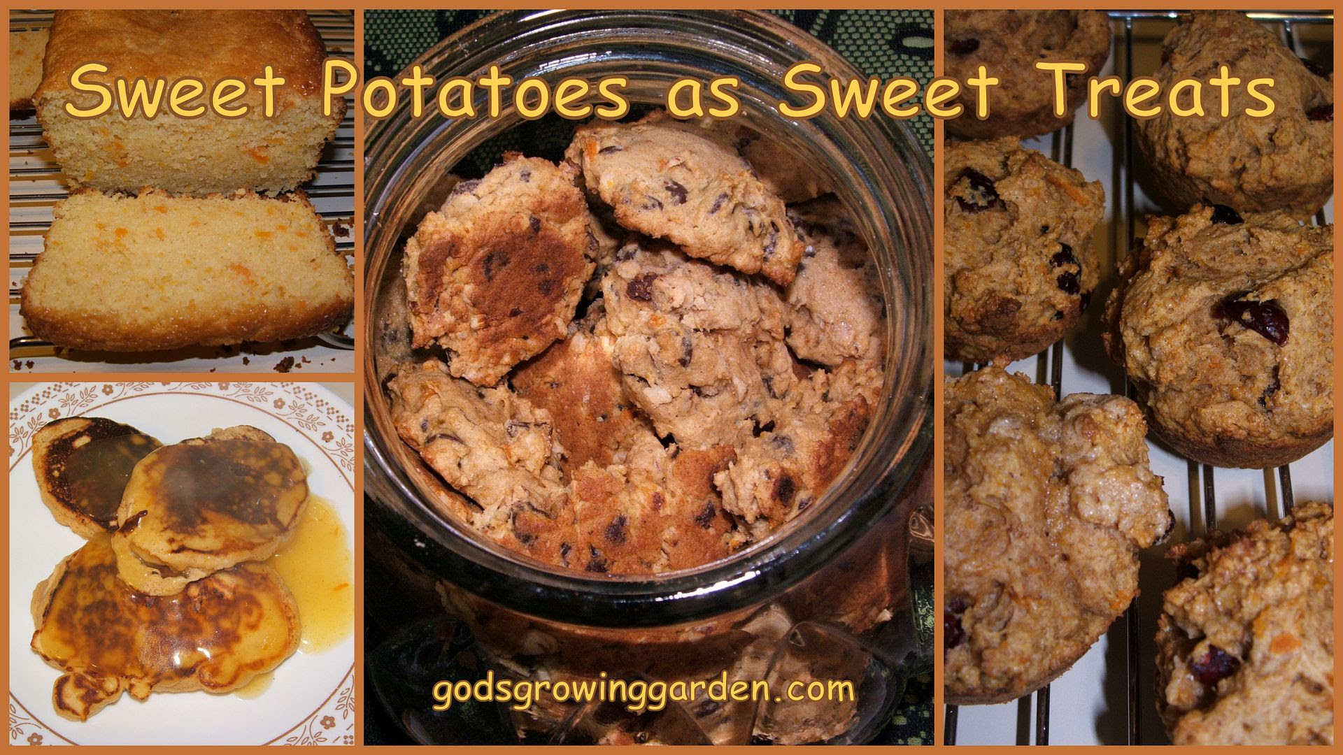 Sweet Potatoes by Angie Ouellette-Tower for godsgrowinggarden.com photo BlogStuff3_zpse7c2c412.jpg
