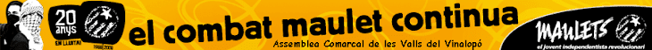 Assemblea Comarcal de les Valls del Vinalopó