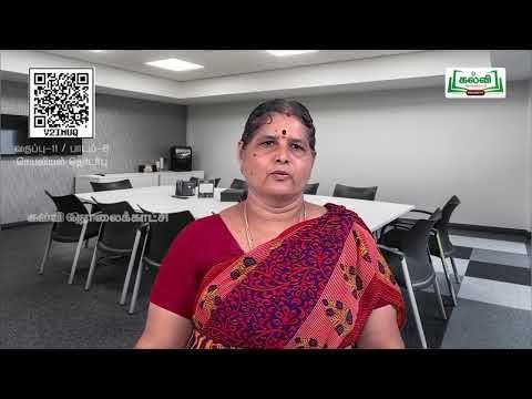 11th Office Management செயலியியல் தொடர்பு பாடம் 8 பகுதி 2 Kalvi TV