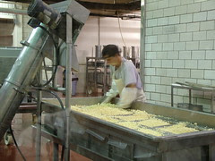 Cheese making 05