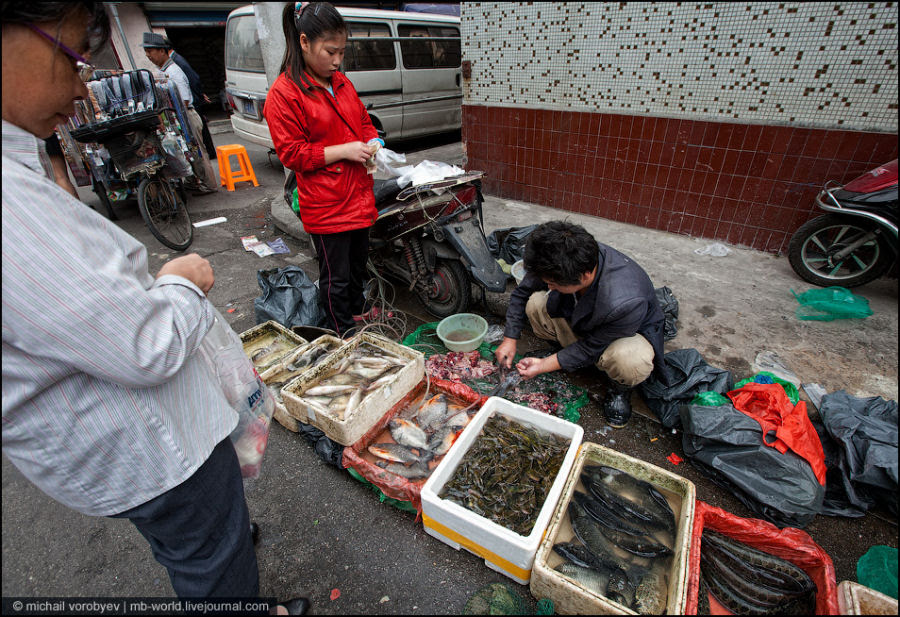 Favelas de Xangai 06