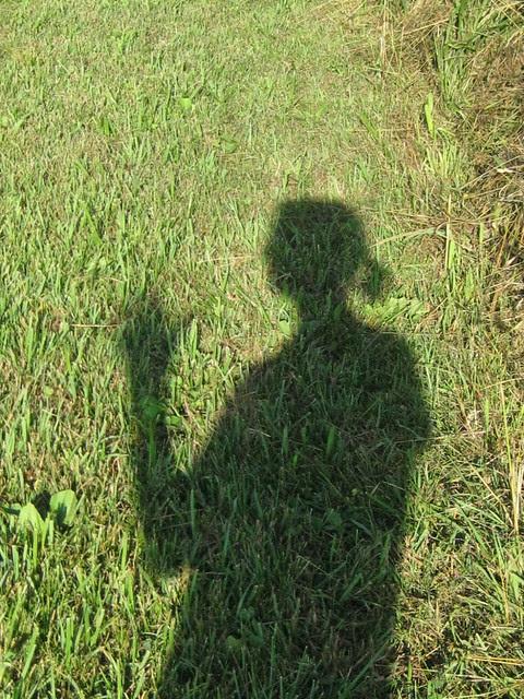 summertime silhouette