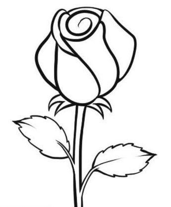 Gambar Bunga Matahari Hitam Putih Untuk Kolase Koleksi Gambar Bunga