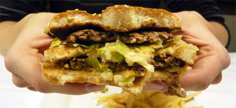http://www.dangersalimentaires.com/wp-content/uploads/2010/12/Hamburger.jpg