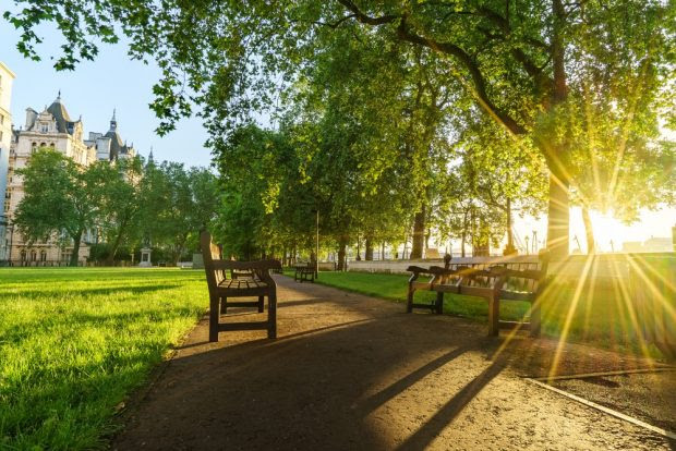 Whitehall gardens at sunrise in London