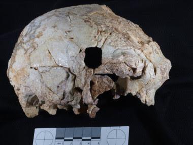 <p>El cráneo hallado en la cueva portuguesa. /Javier Trueba</p>