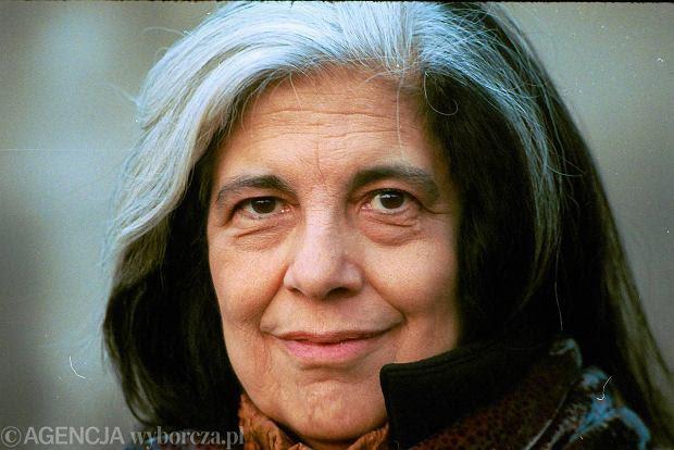 Image of essayist Susan Sontag