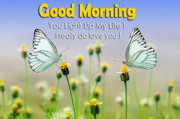 Good Morning You Light Up My Life Good Morning Images Quotes