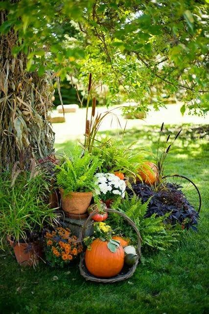 garden decoration ideas 3