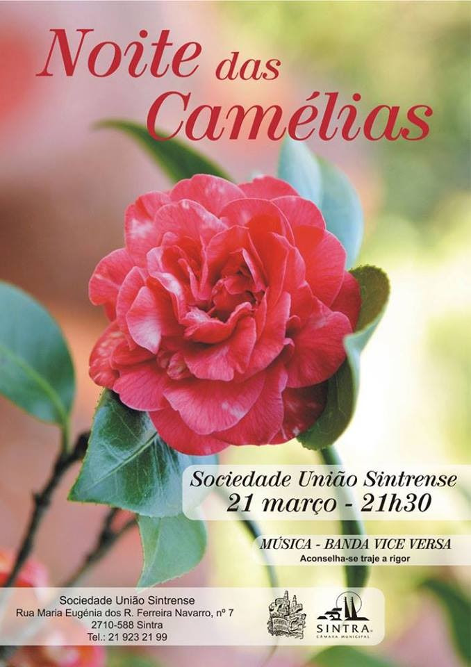 BailedasCamélias2015.jpg