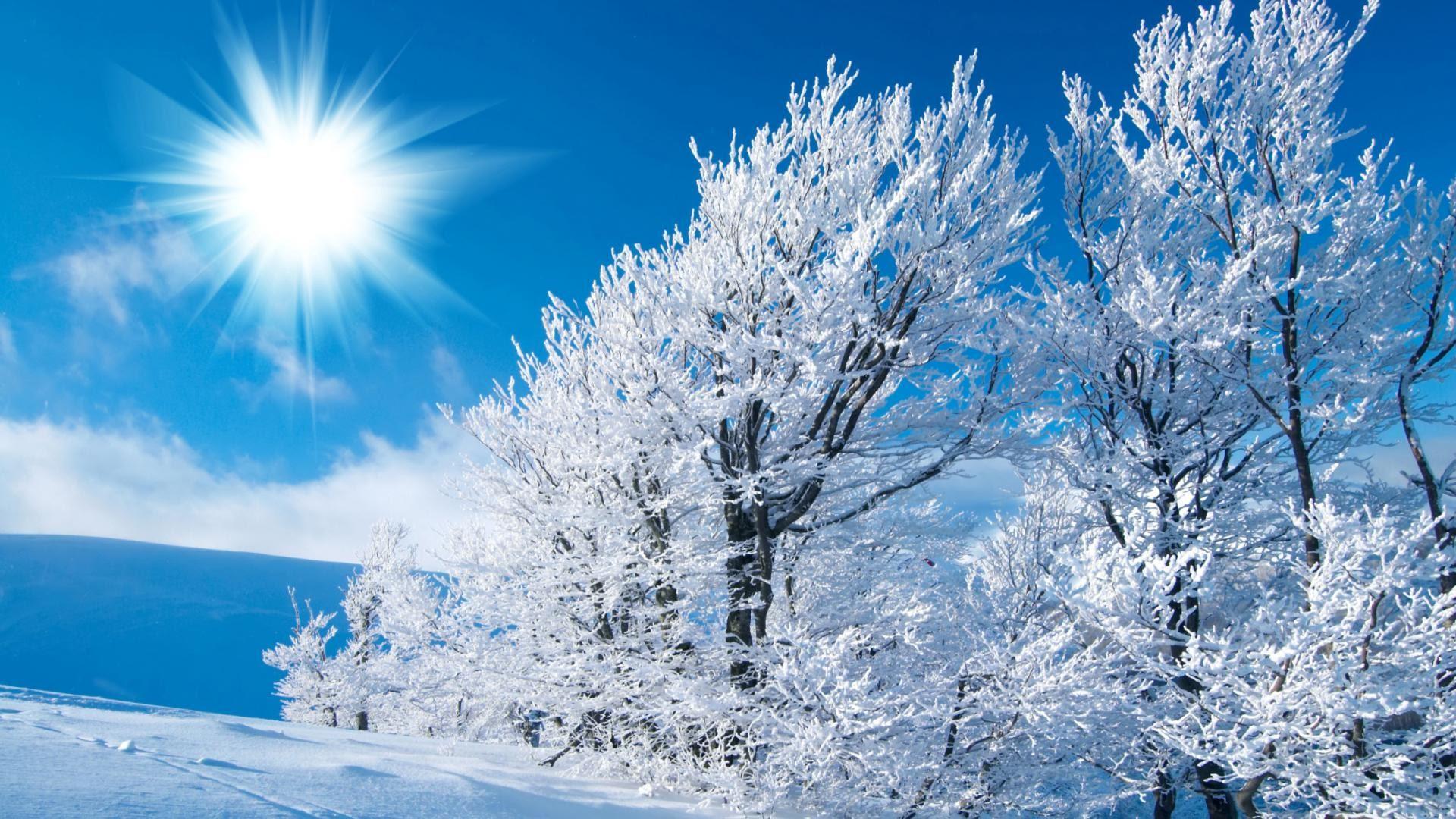 Winter Wonderland Scenes Wallpaper (38+ images)