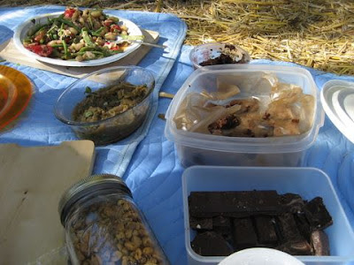 photo of picnic foods