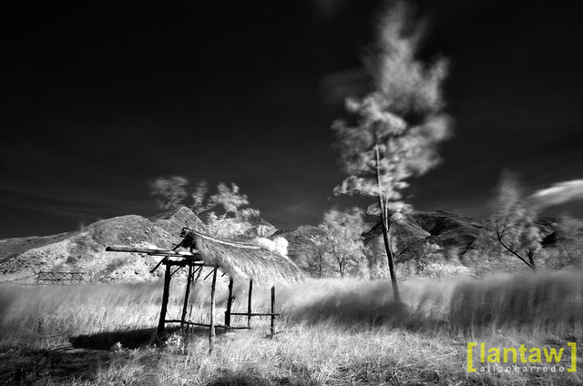 Nagsasa Backwoods in mono IR