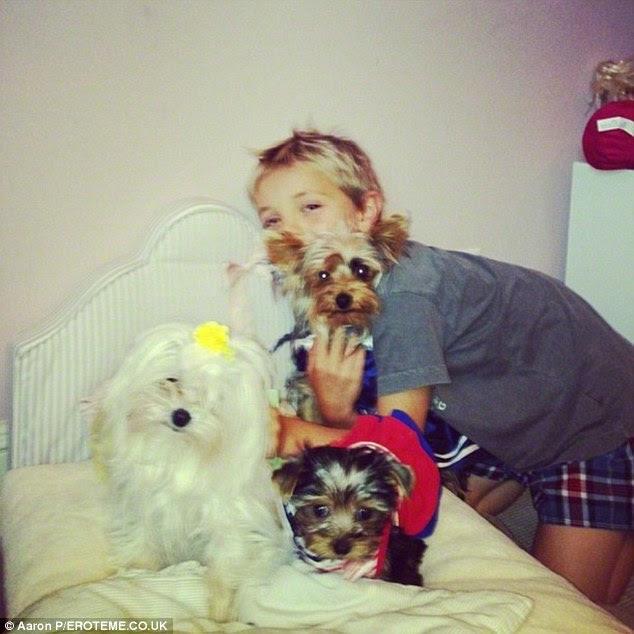 Ultrajante!  Os cãezinhos de estimação incluem um Yorkie Teacup chamada Hannah Spears - o que ela pagou US $ 8.212 em 2012 e um maltês branco chamado Lacey comprado por US $ 5.568 no ano seguinte