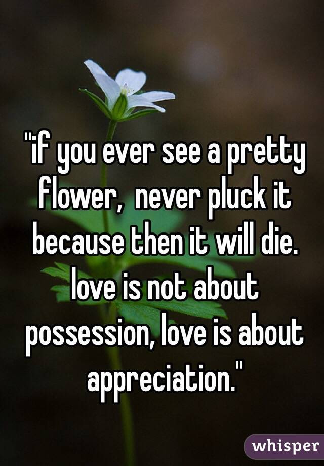 If You Ever See A Pretty Flower Never Pluck It Because Then It Will
