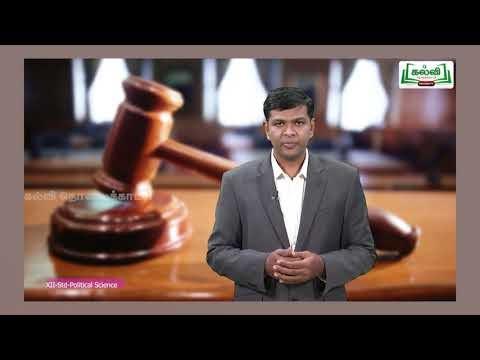 12th அரசியல் அறிவியல் இந்திய நீதித்துறை Kalvi TV