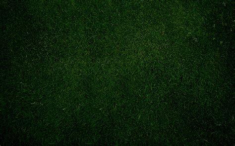 hd green wallpapers