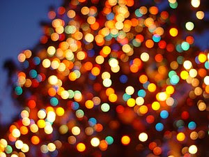 English: Christmas lights on the tree in front...