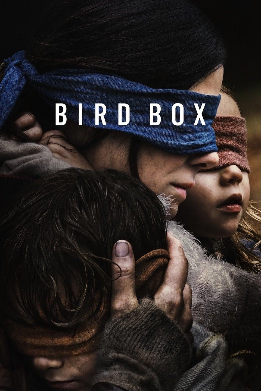 birdbox ile ilgili görsel sonucu